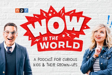 """Hosts Guy Raz and Mindy Thomas pose and smile in inquisitive positions with the """"Wow in the World"""" logo on a brick wall."""