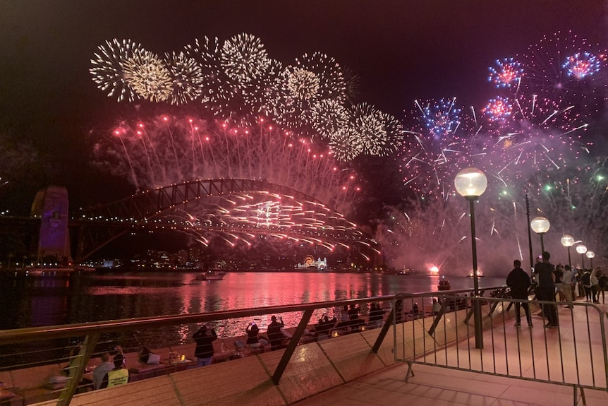 A handful of revellers watched on as fireworks lit up the night sky in Sydney.