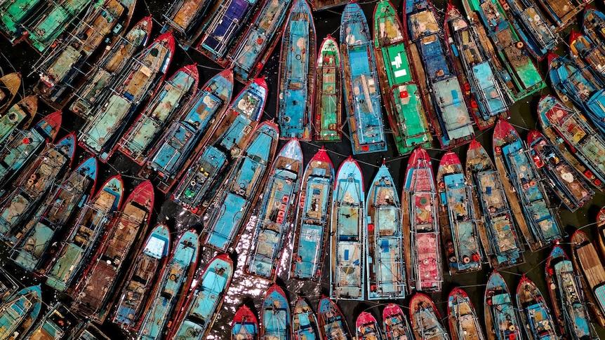 Are the fish wars coming? Johan Bergenas talks to Jonathan Green.
