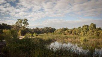Bayswater Eric Singleton Bird Sanctuary