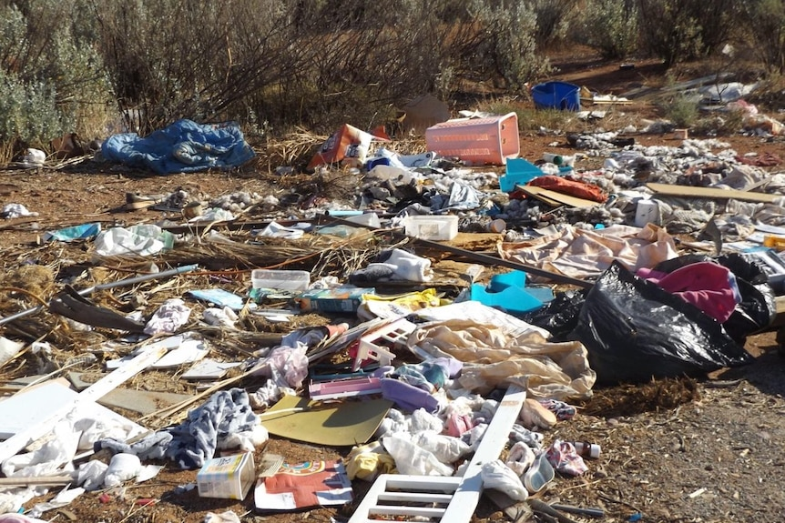 Scattered rubbish dumped in the bush.
