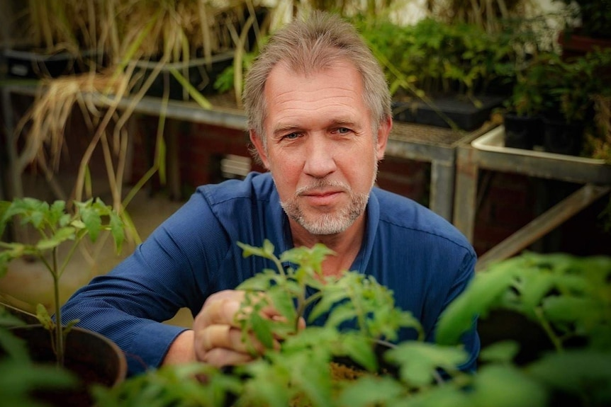 Sergey Shebala looks serious and he holds some plants.