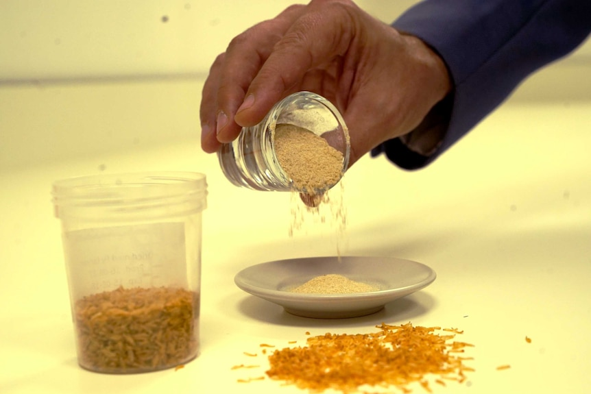 A man pouring a small glass of yellow powder onto a plate
