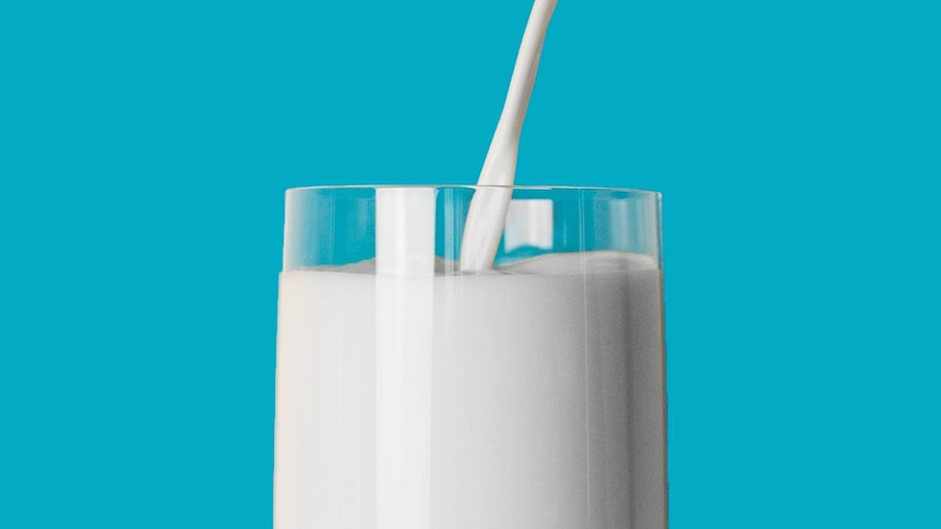 Close up of milk being poured into a glass, against a bright blue background.