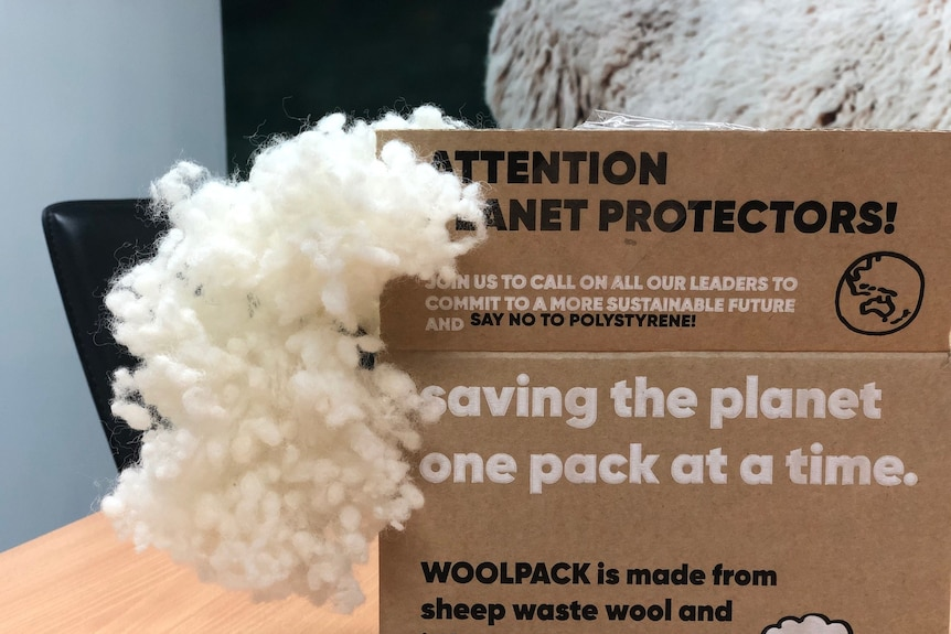 A cardboard box with wool packaging emerging from it.