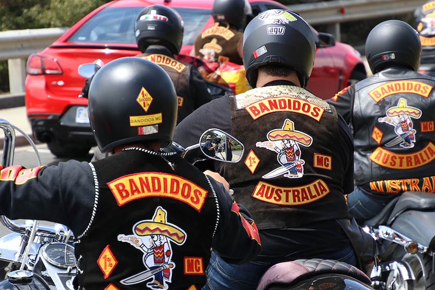 Bandidos gang members on motorcycles seen from behind.