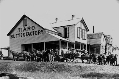 black and white photo of building. Sign reads 'Tiaro Butter Factory'