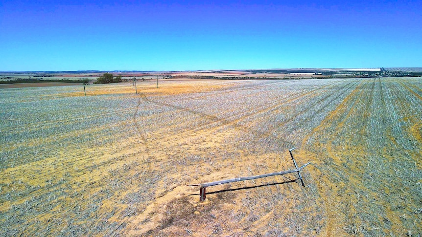 A power pole and line lying in a paddock stretching out towards a clear blue horizon.