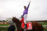 Jockey Glen Boss celebrates on board Sebring after winning the Golden Slipper at Rosehill on April 19, 2008.