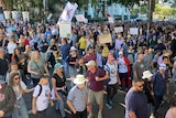 Large crowd of people holding banners and signs in protest