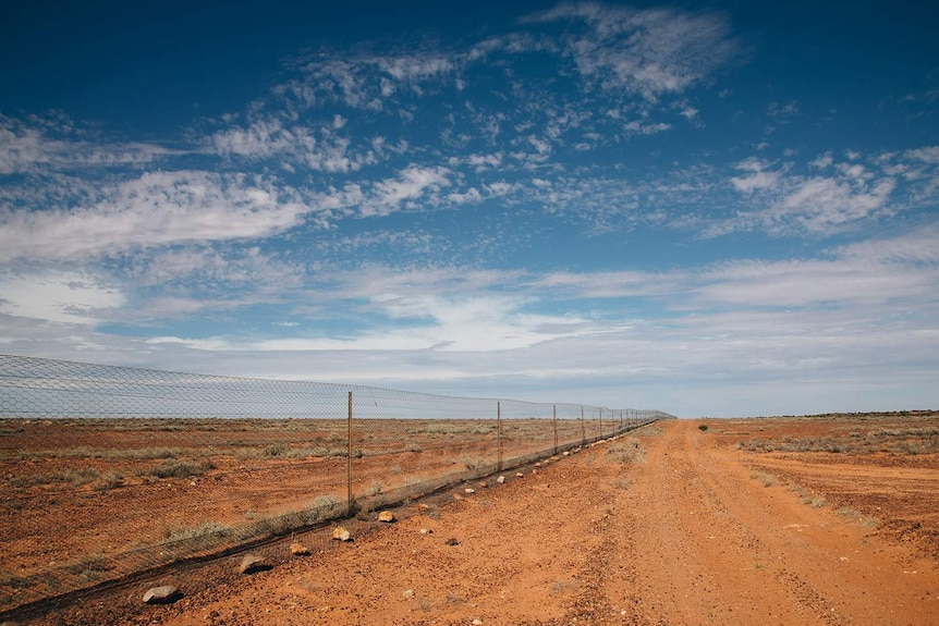 A long, straight fence running through arid, red country.