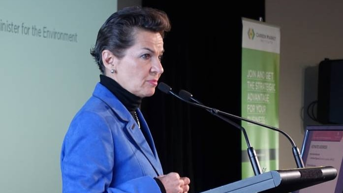 UN Climate change negotiator Christiana Figueres has urged Australia to show leadership during emission reduction talks in Paris