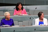 Four women sit on the grey green crossbenches of the Lower House of Parliament.