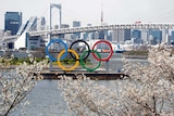 A view across a harbour in Tokyo, past blossom trees, with the Olympic rings in the distance.