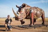 A man with his dog and a giant metal rhino.