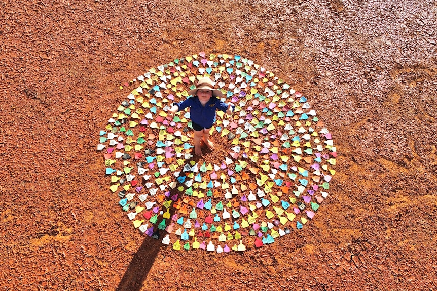 A boy stands in a circle of ear tags, looking up at the camera.