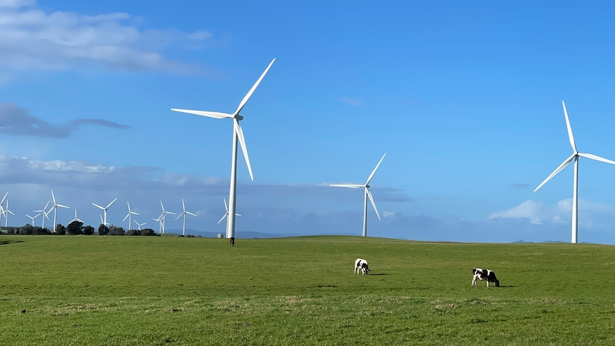 Wind turbines with a blue sky background