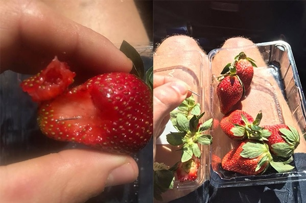 Composite photo of the sewing needle found inside a strawberry and a wide shot of hand holding a needle over a punnet.