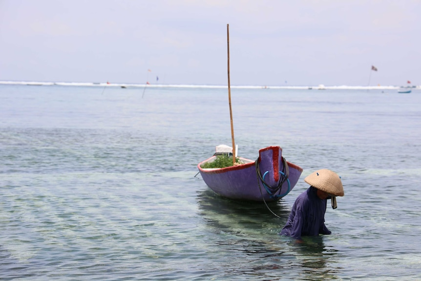A woman draws a traditional boat through the channel.