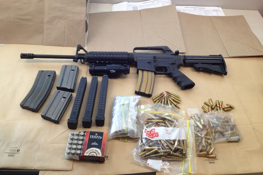 Guns and ammunition seized by the NSW police force