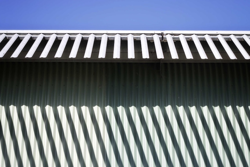 The top of a corrugated iron fence with protruding pieces of metal aimed at preventing escape.