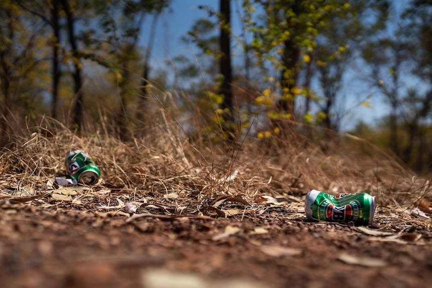 Empty beer cans are littered on the ground