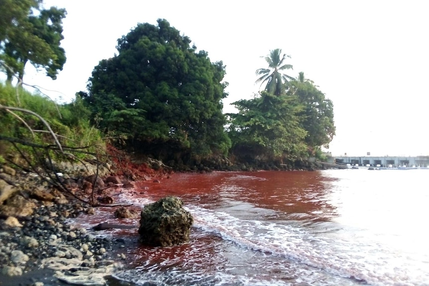 The water at Basamuk Bay in Papua New Guinea's Madang province turns red, after a toxic slurry spill.