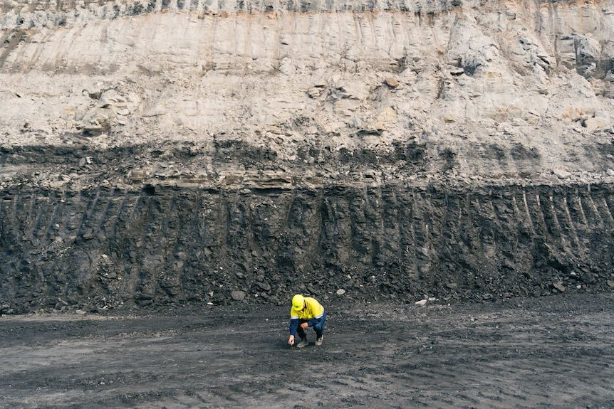 A man bends down to pick up a piece of coal at Collie Western Australia Griffin Coal Mine.