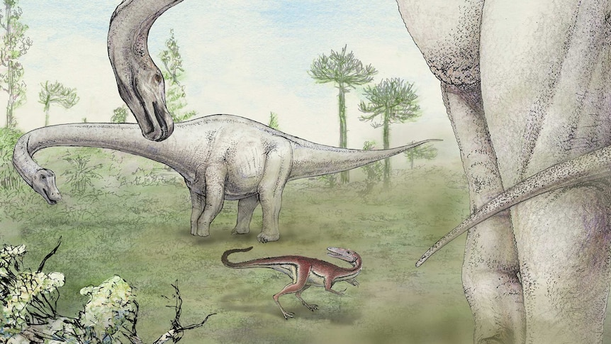A drawing of two large dinosaurs and one smaller one