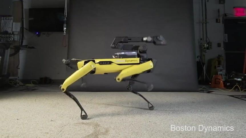 Boston Dynamics robot brings the funk