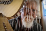Man looks through the strings of a harp