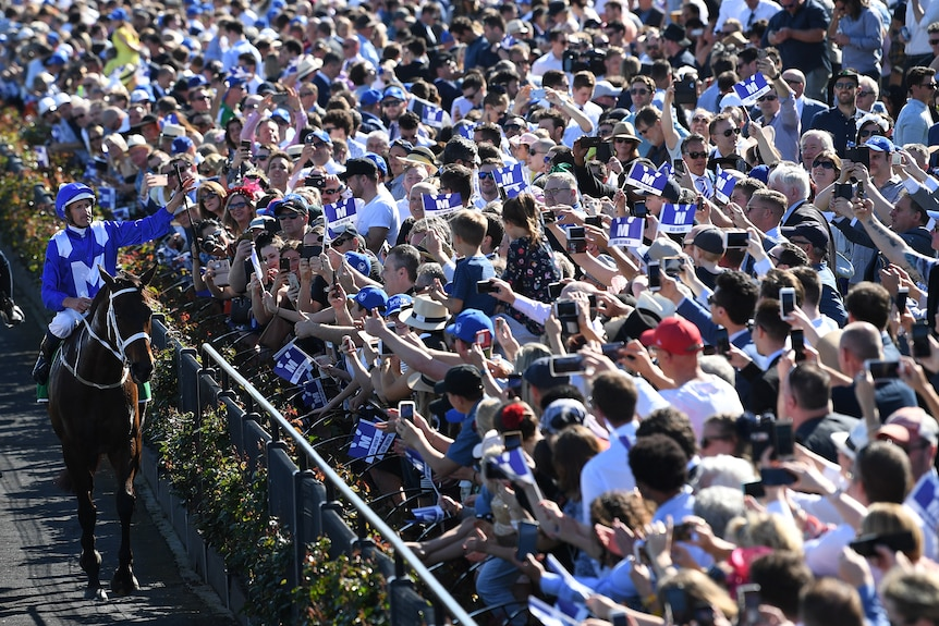 Hugh Bowman celebrates atop Winx after winning Turnbull Stakes