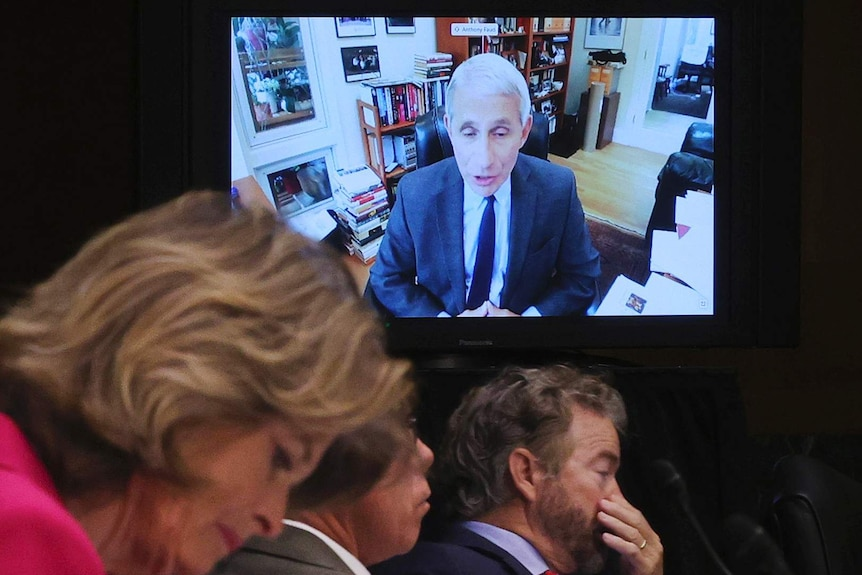 Dr Anthony Fauci appears via video on a television.