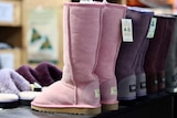 Pink and purple ugg boots sit on a shelf.