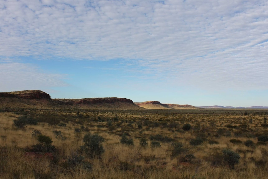 Range and open plain of Newhaven Wildlife Sanctuary north west of Alice Springs.