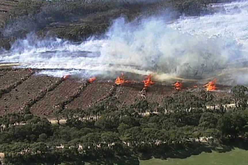 Smoke and flames on burning logs