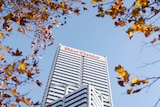 The office tower with the Rio Tinto logo is framed by autumn leaves.