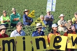 Young farmers stand in a cotton field holding up small signs spelling out '#WrongMineWrongPlace'