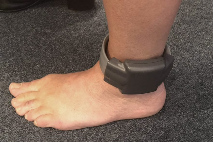 A close-up of a person's foot, wearing GPS tracking device around the ankle.