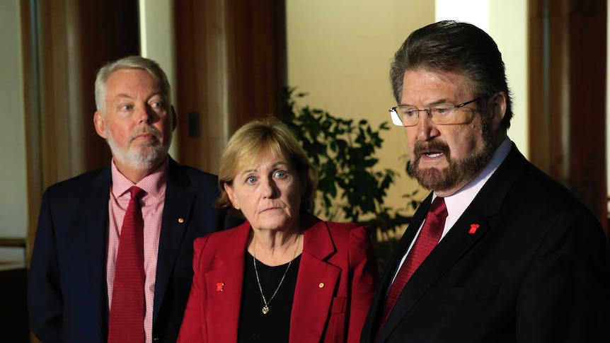 Bruce and Denise Morcombe, parents of Daniel, look on at senator Derryn Hinch as he speaks into a microphone at a presser