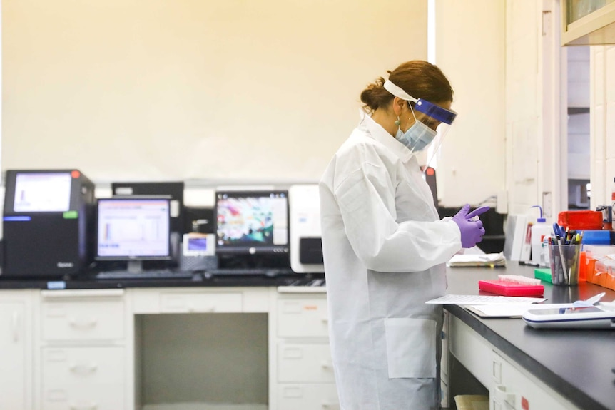 A female research scientist looking at a test tube in a lab