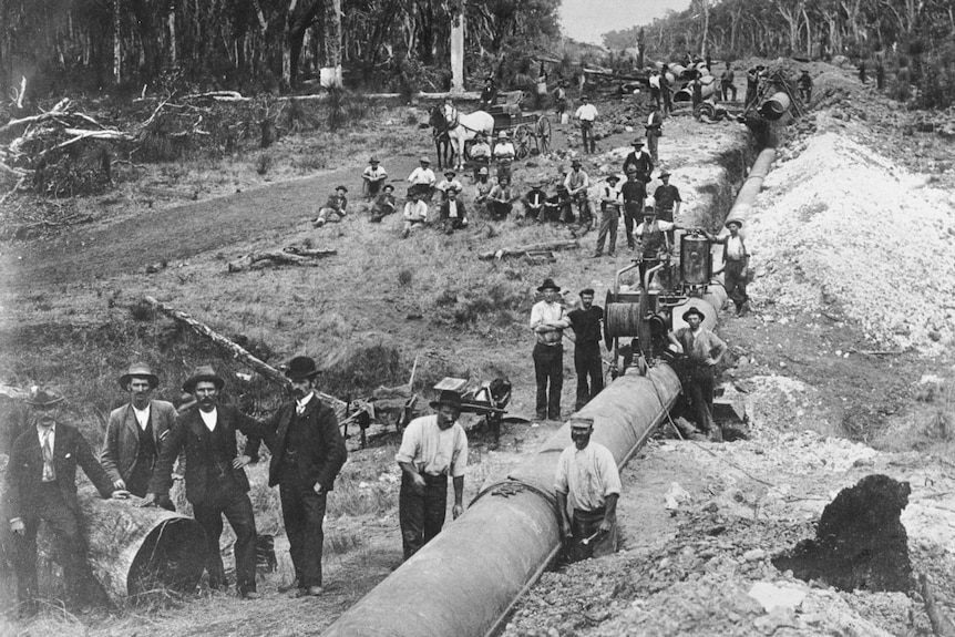 Black and white image of workers laying the Goldfields Pipeline from Perth to Kalgoorlie.