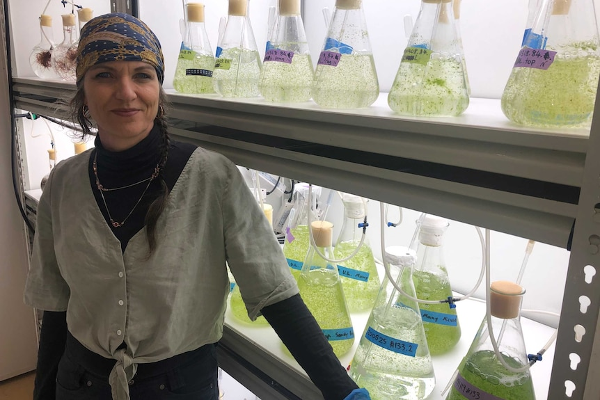 a woman stands in front of shelves with beakers full of seaweed