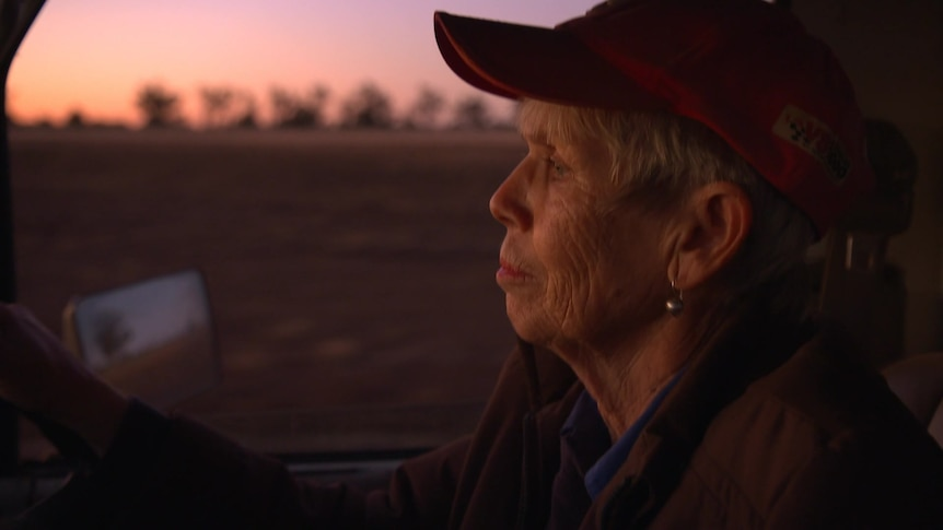 Woman wearing red hat driving a truck at sunrise.