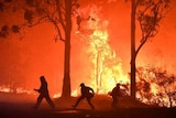 Firefighters silhouetted against a fire ground in the bush, with towering flames roaring among the trees.