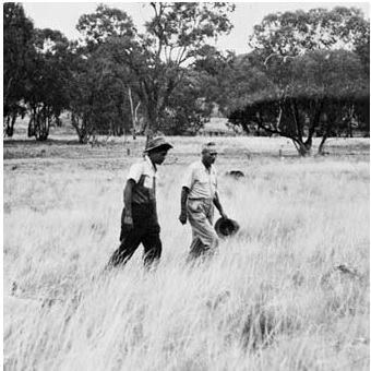 Aboriginal tracker Alexander Riley