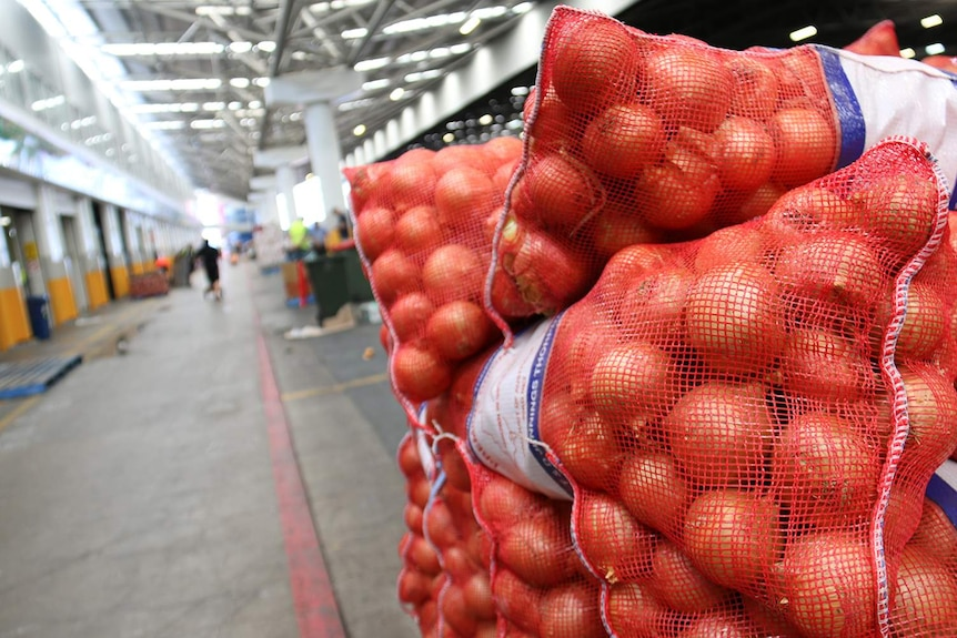 Bags of onions at the Brisbane Markets.