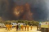 Firefighters view a bushfire burning near Esperance in WA 18 November 2015