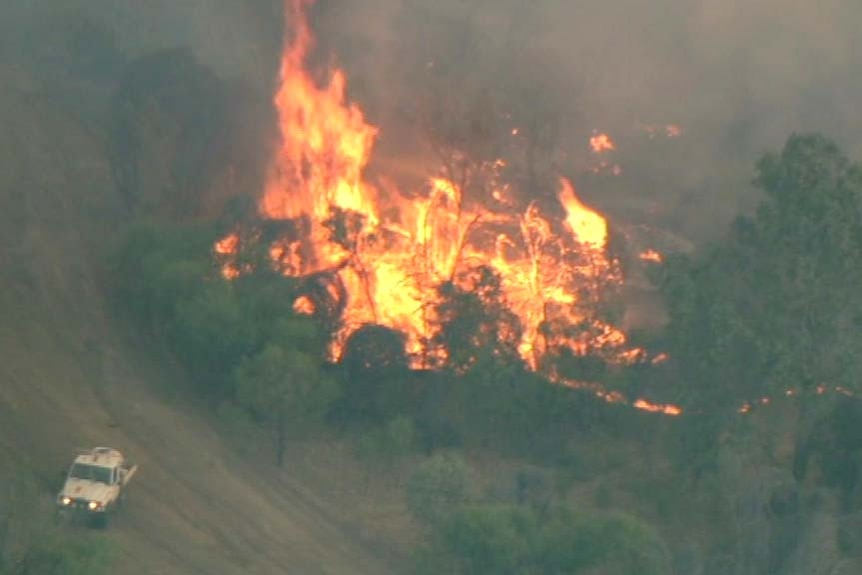 Aerial photo of a fire burning in trees, with a firefighting truck nearby.