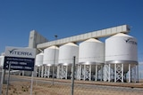 Grain silos owned by Viterra in South Australia
